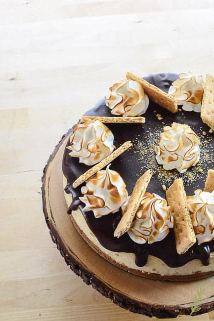 Sense & Edibility's S'mores Cheesecake
