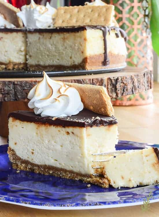 Smores Cheesecake Un Camping With Sense And Edibility