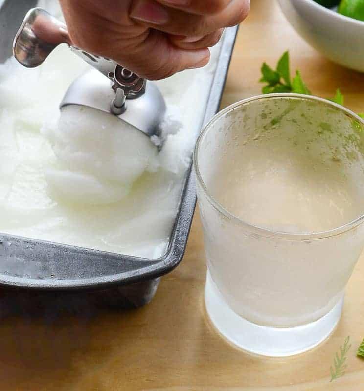 Sense & Edibility's Gin Rickey Sorbet