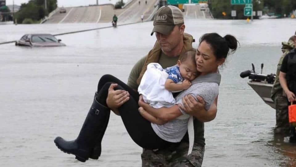 Sense & Edibility's Hurricane