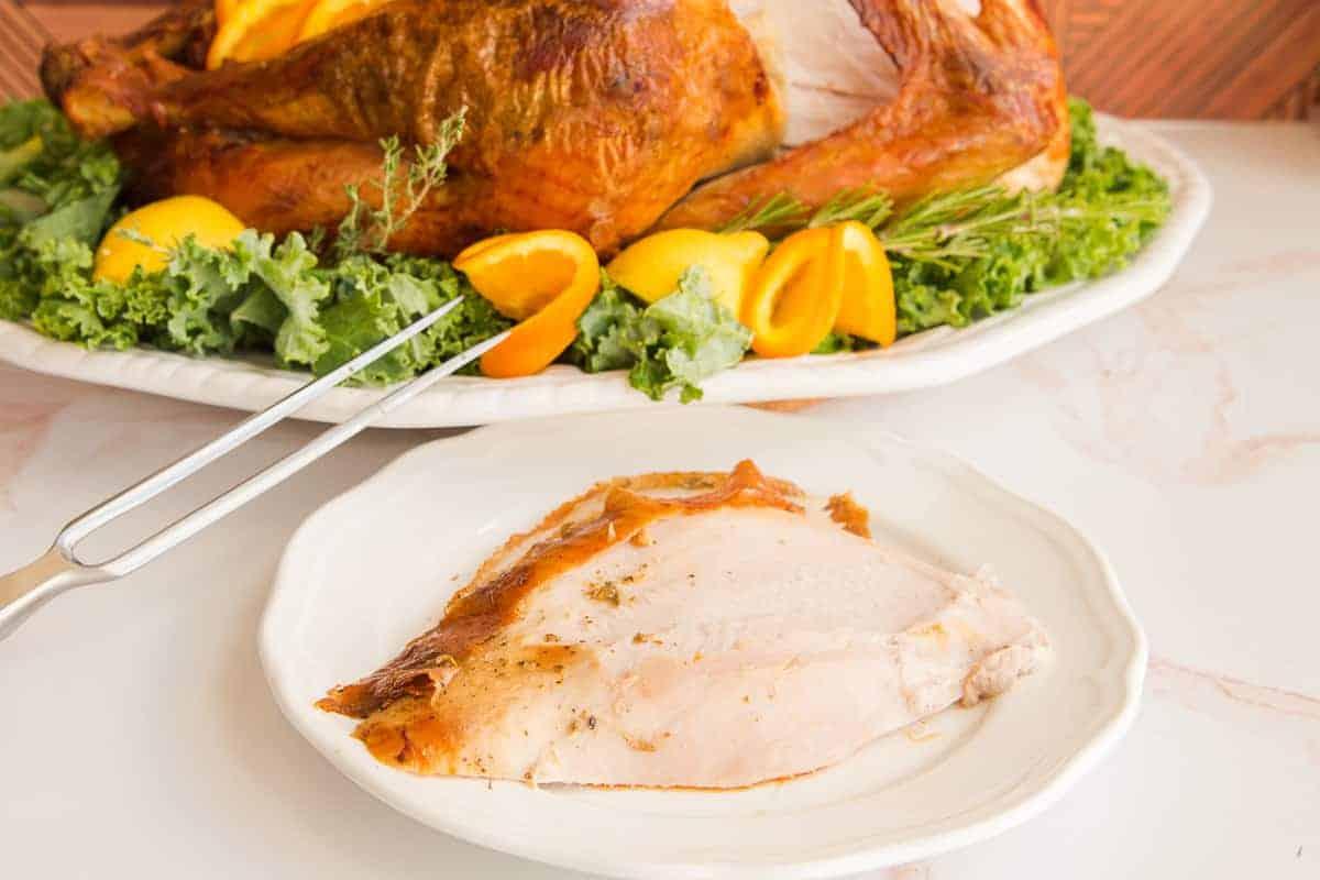 Slice of Dry brine turkey on a white plate.