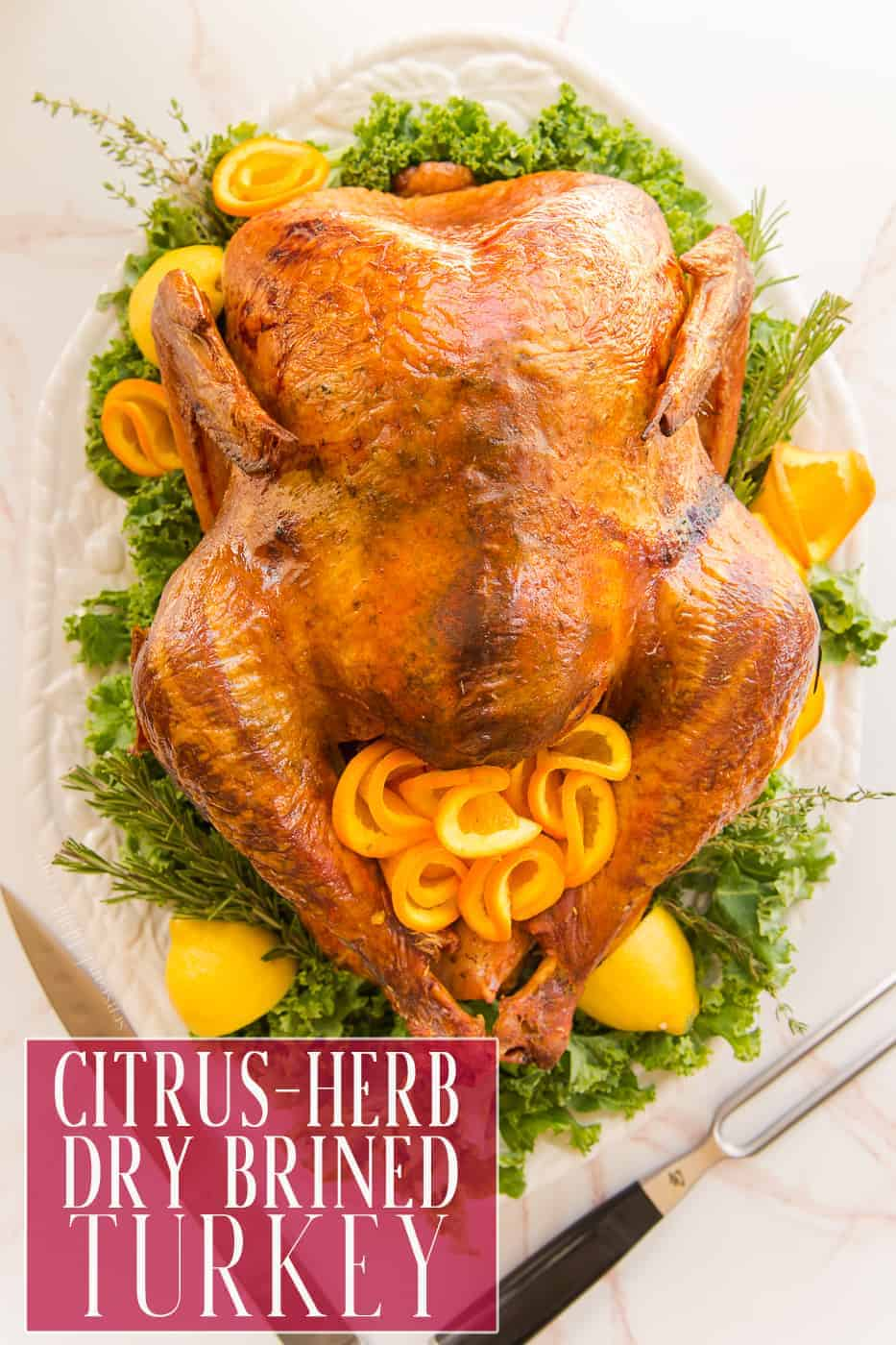 Dry Brine your turkey this year for the most succulent bird you've ever eaten. From what a brine is to why you should always do it, this tutorial will teach you everything you need to know. #turkeyrecipe #holidayturkey #thanksgivingturkey #christmasturkey #roastturkey #roastmeat #meat #drybrine #brine #cookingtechniques #roastingmeat #holidayrecipe #holidaymealplanning #pavo #recetadepavo #holidaymealplanning #easter #newyears #citrusherbbrine #spiceblend #spicerub #dryrub via @ediblesense