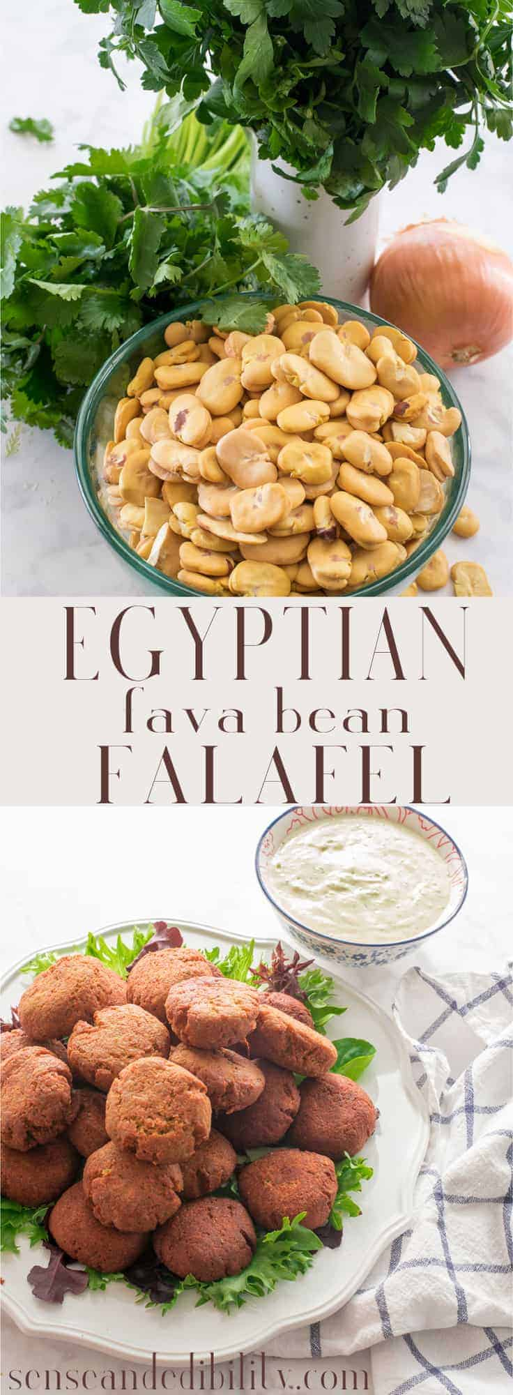 Egyptian falafel, made with fava beans, is often overlooked. This flavorful, filling vegetarian dish deserves a place on your table. #falafel #favabeans #arabfood #fritters via @ediblesense