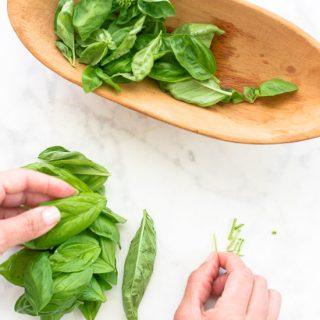 Chiffonade Herbs: Sense & Edibility's Culinary Class