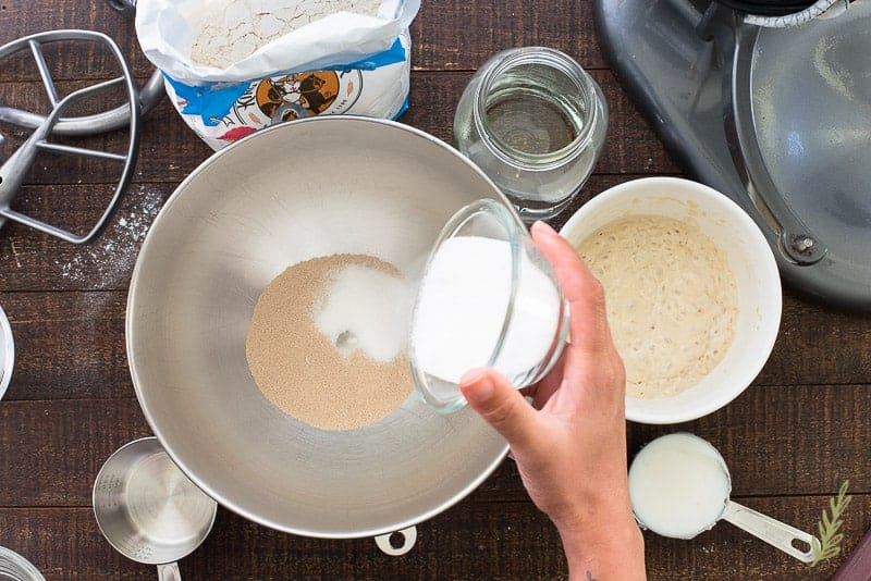 Sugar is added to the yeast which is in a stainless steel mixer bowl