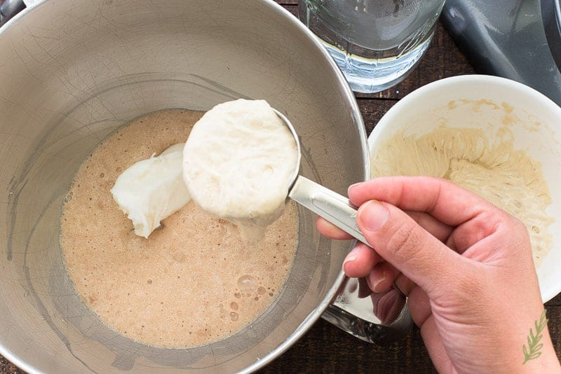The Pan Sobao poolish is added to the activated yeast in the steel bowl