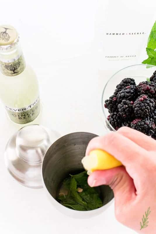 Sense & Edibility's Blackberry-Vodka Smash