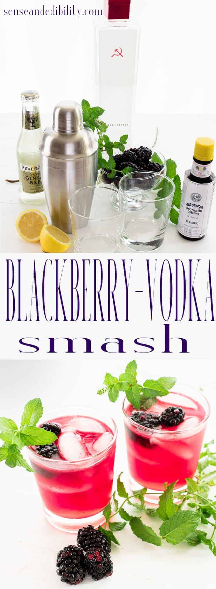 Sense & Edibility's Blackberry-Vodka Smash Pin