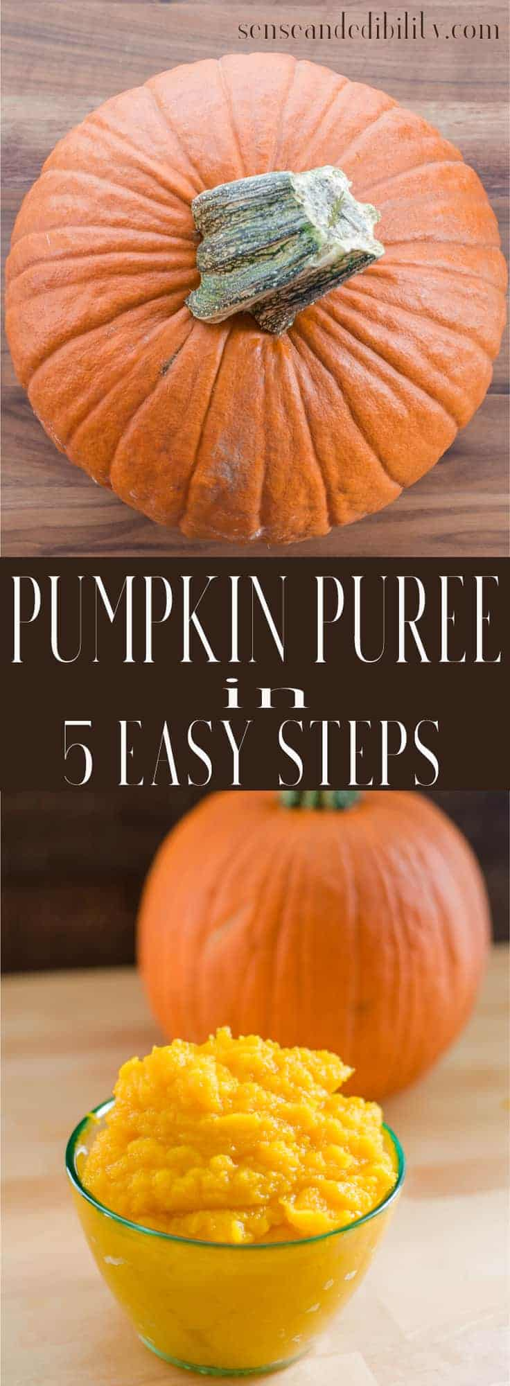 Sense & Edibility's Pureed Pumpkin in 5 Easy Steps Pin