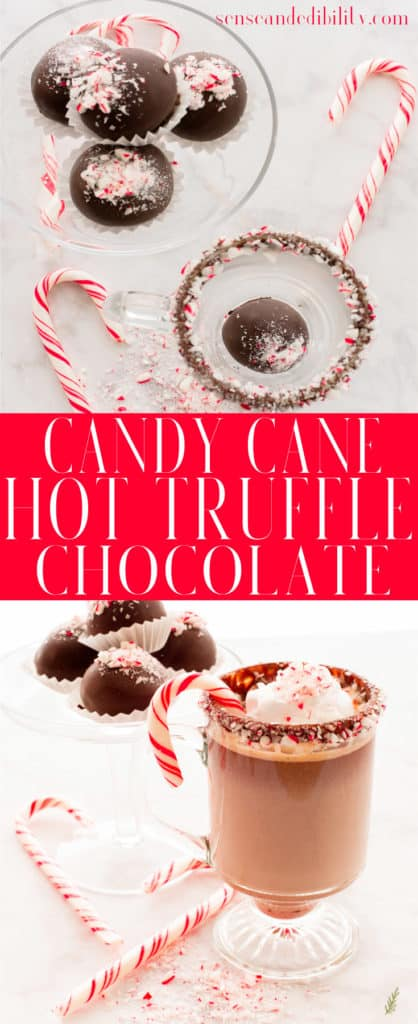 Sense & Edibility's Candy Cane Hot Truffle Chocolate Pin