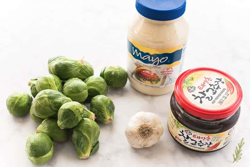 Sense & Edibility's Fried Brussels Sprouts with Gochujang Mayo Dip