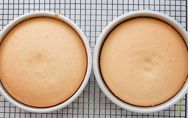 The baked Piña Colada Cake are cooling in their pans on a black cooling rack.