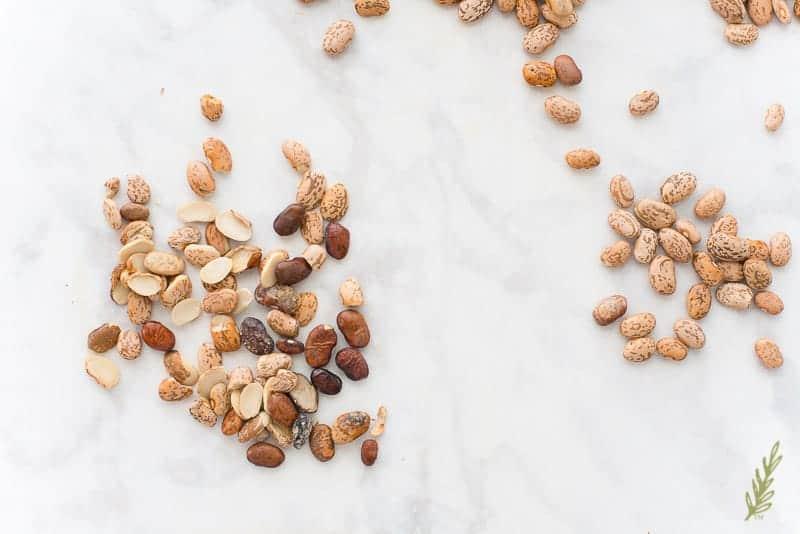 Sense & Edibility's Texas Baked Beans