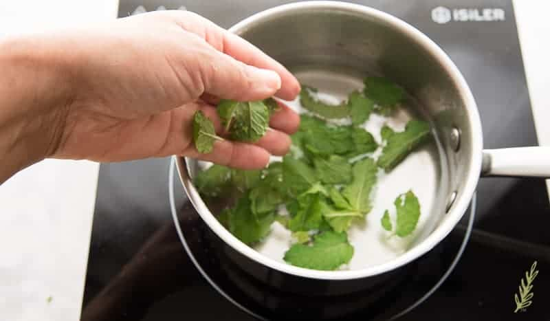 Adding fresh mint leaves to the simple syrup