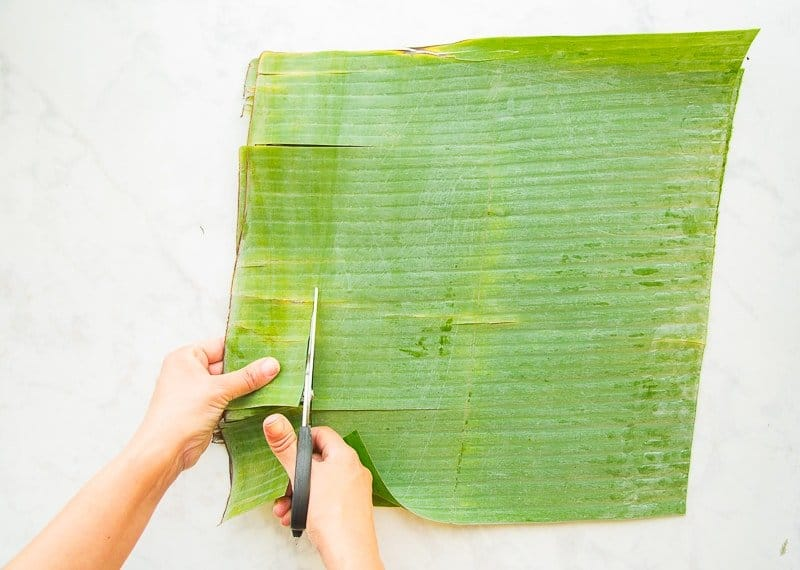 The fibrous rib and torn sections of the banana leaves are removed with scissors