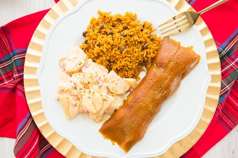 A horizontal image of a white plate on a red and blue plaid napkin with a pastel, yellow rice and white potato salad