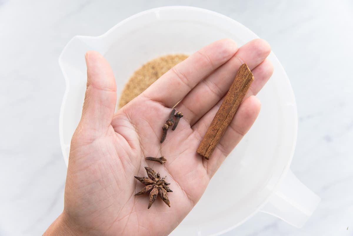 Star anise, whole cloves, and a cinnamon stick are held in the palm of a hand before being added to the seeds in the water.